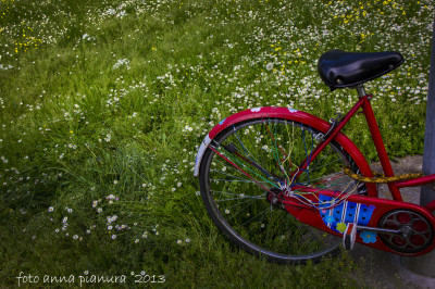 bicicletta su un prato fiorito