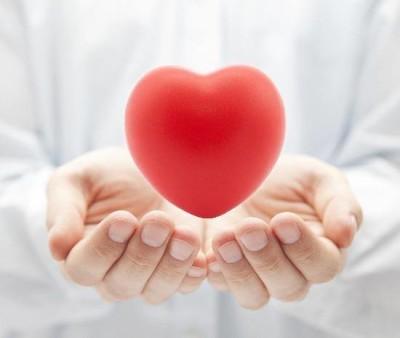 I diecisegreti del cuore foto
