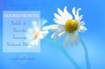 Il linguaggio dei fiori: MARGHERITA