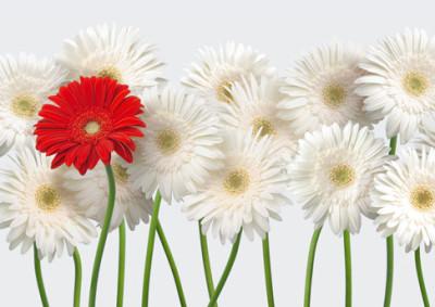 Fiore 400x283 - Pagamenti diversi bnl cosa sono ...