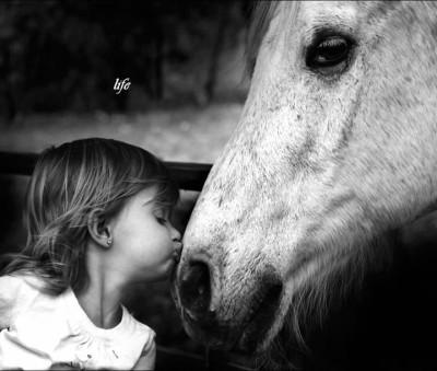 Frasi Sull Amore Per Gli Animali